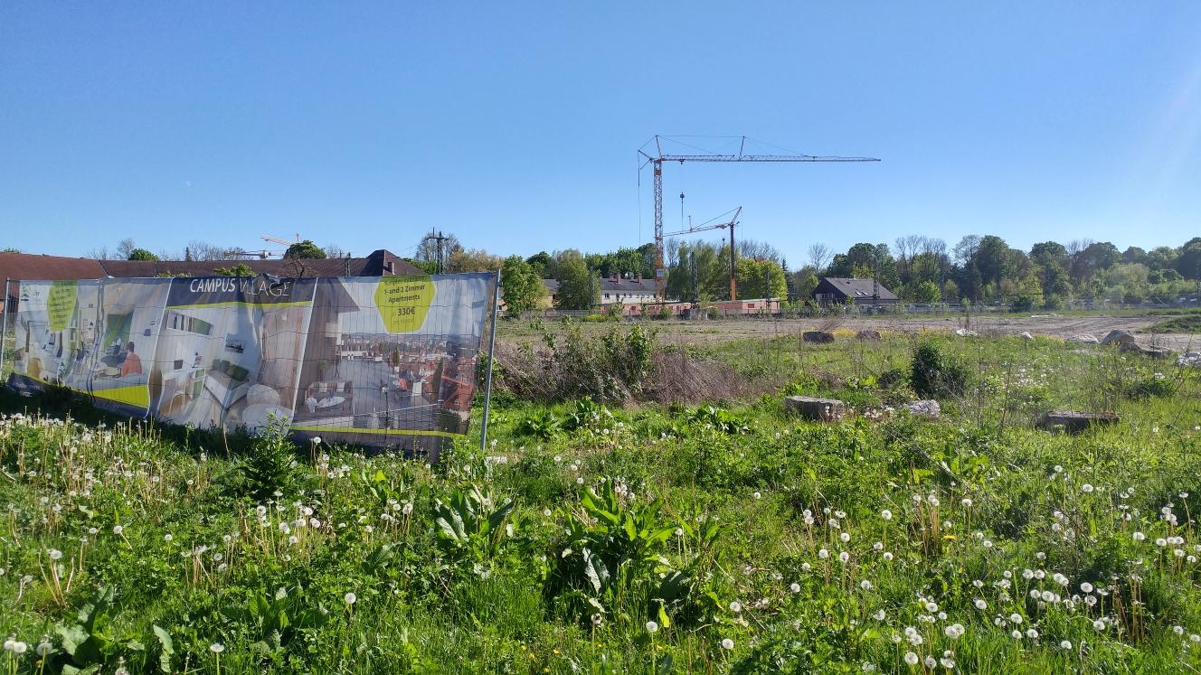 Neubau Grüne Höfe Mai 2017