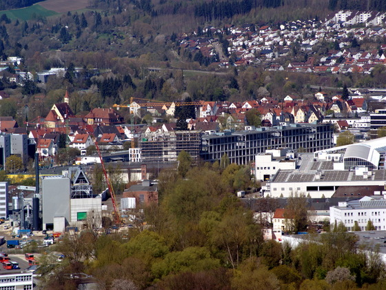 Ulm Stadtregal  (5)