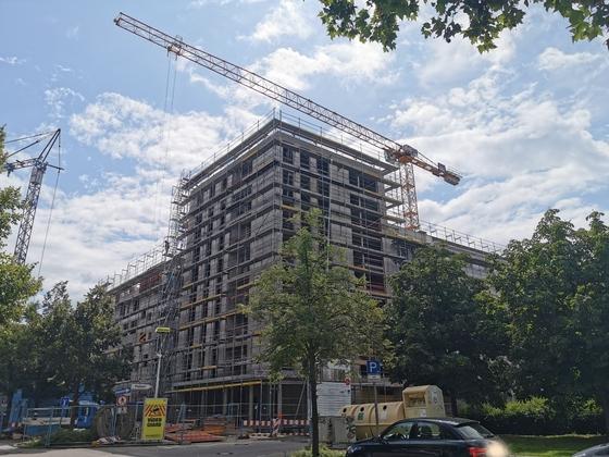 Ulm Neubau August 2019