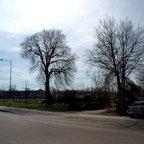 Neu Ulm Ehemaliges Bahngelände hinter der Post