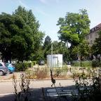 Ulm Wengentor Olgastraße Wengengasse (5)